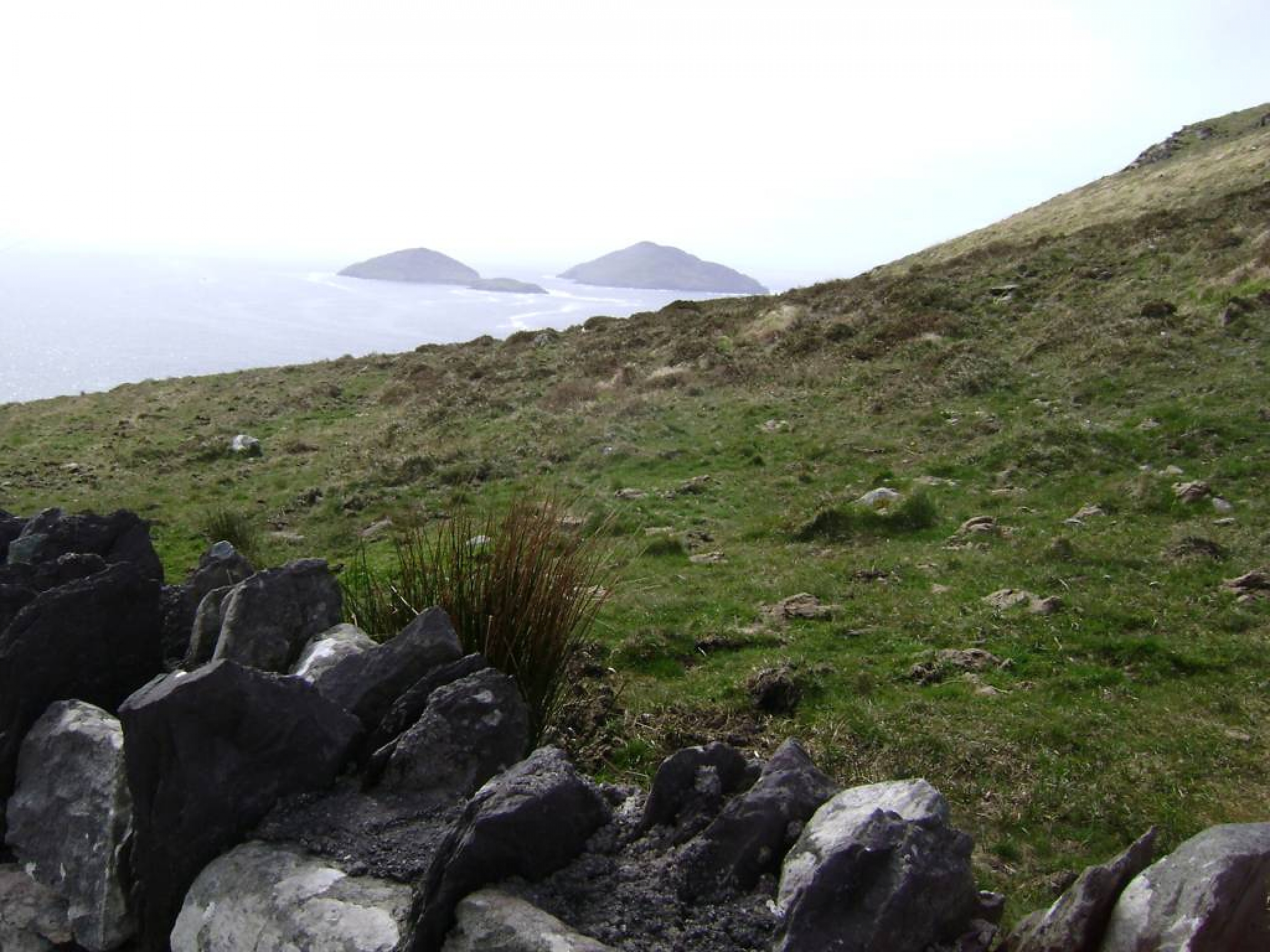 Ring_of_Kerry_(10)