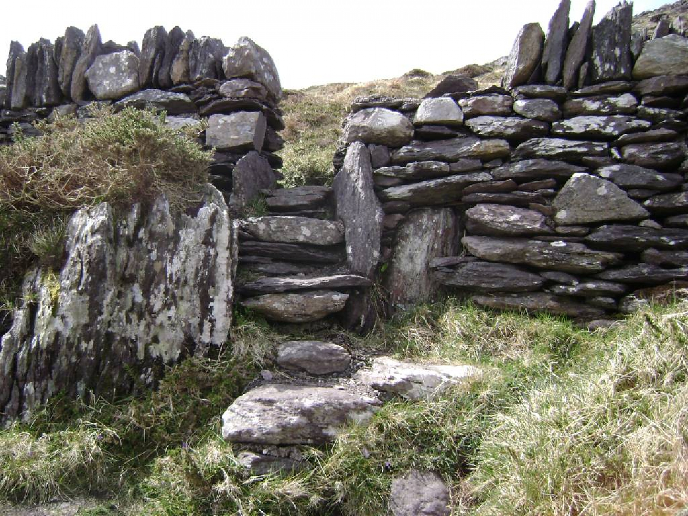 Ring_of_Kerry_(15)