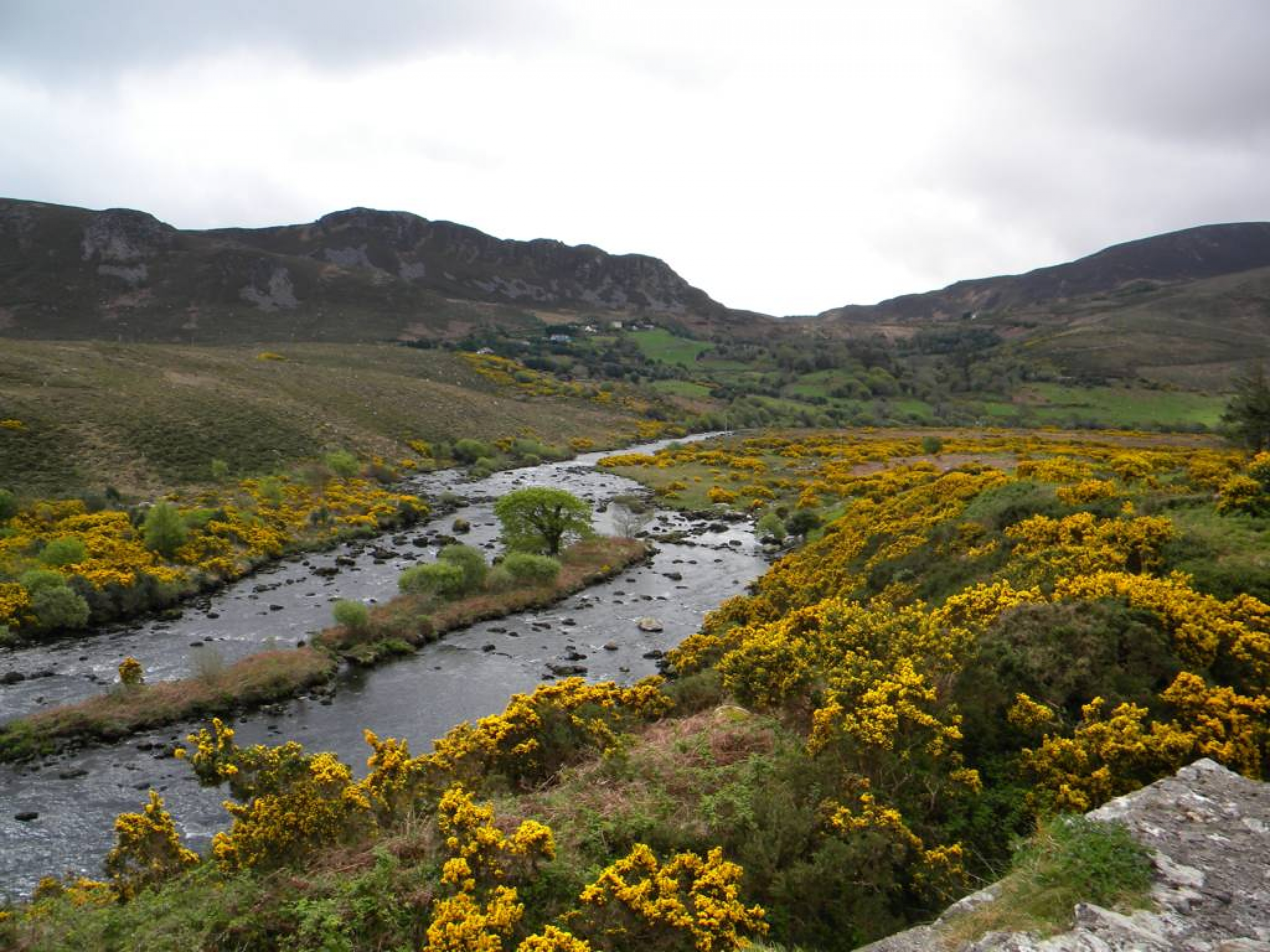 Ring_of_Kerry_(36)