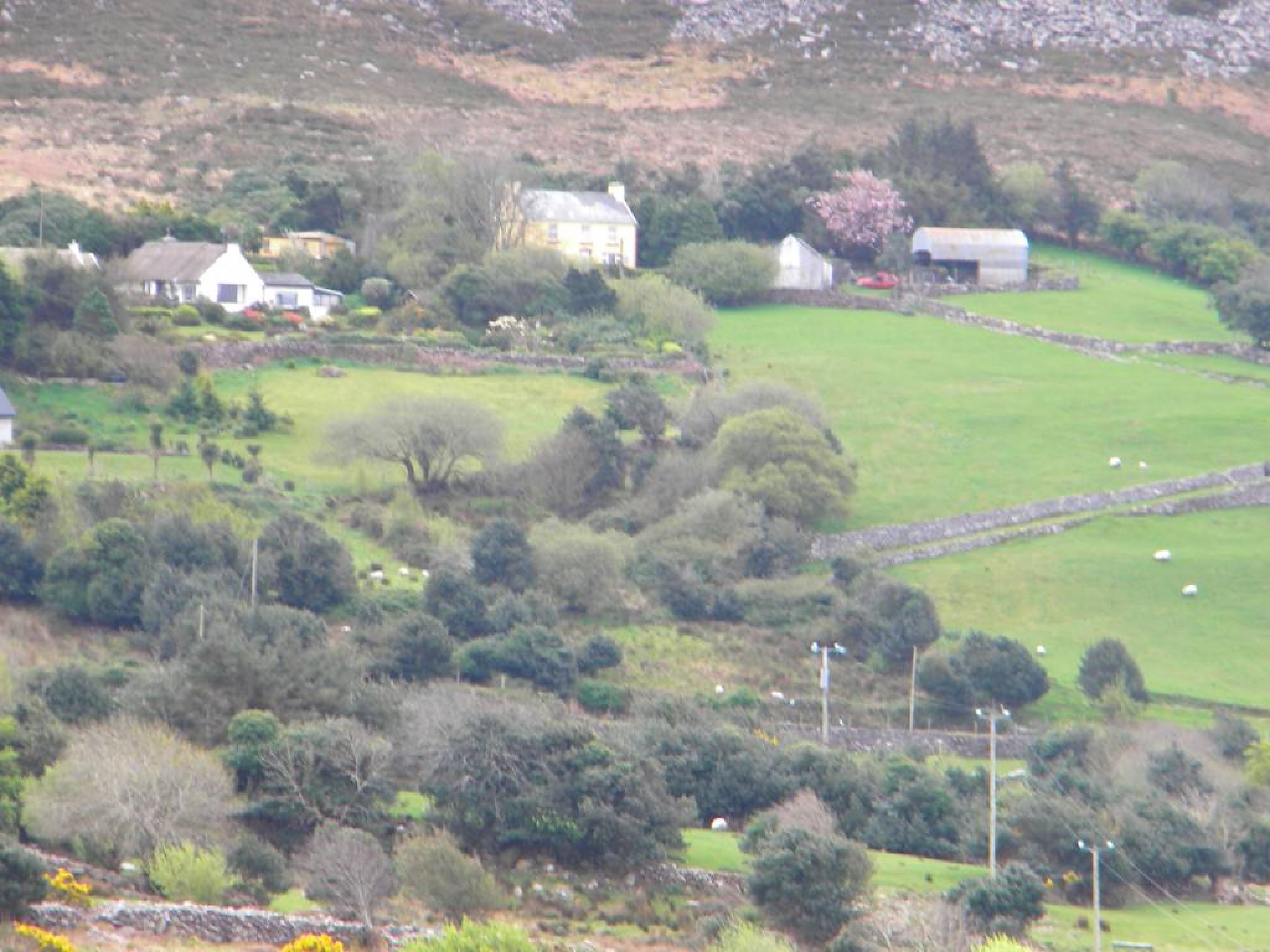 Ring_of_Kerry_(39)
