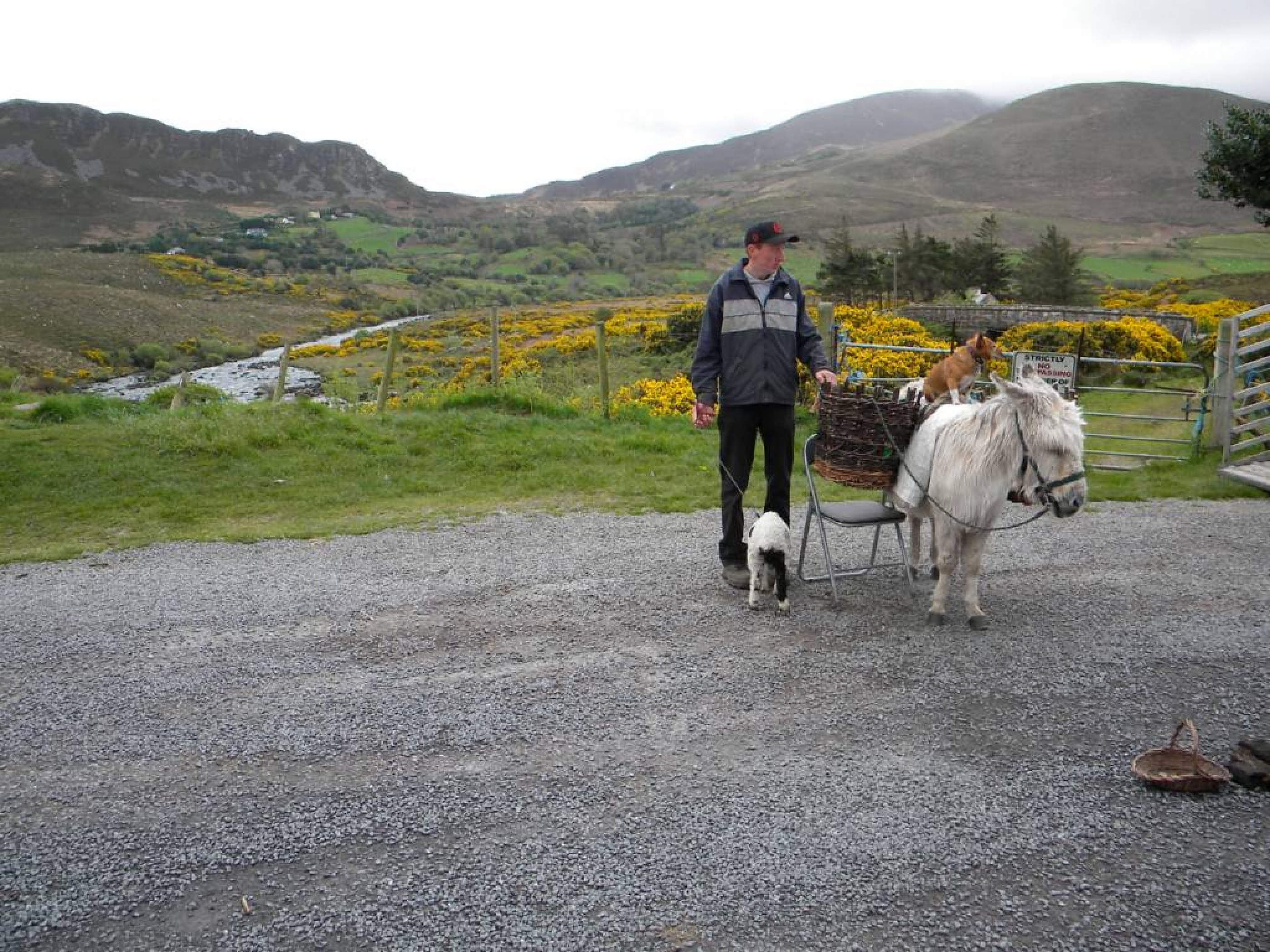 Ring_of_Kerry_(43)