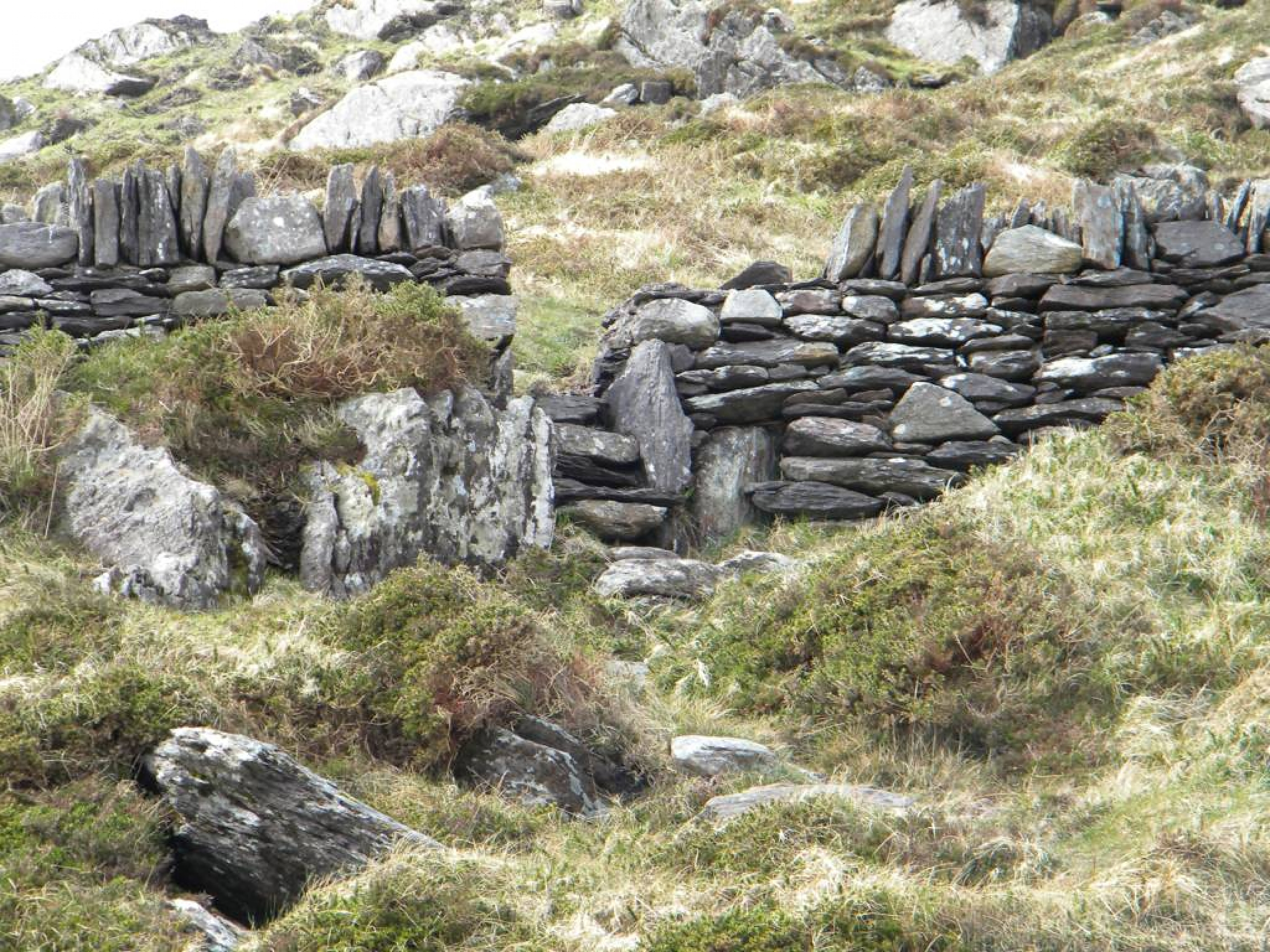 Ring_of_Kerry_(81)