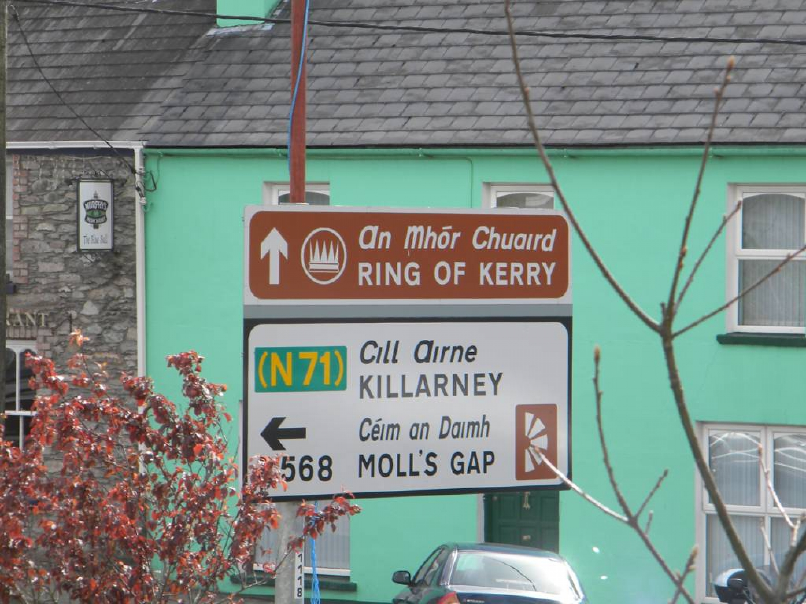 Ring_of_Kerry_(83)