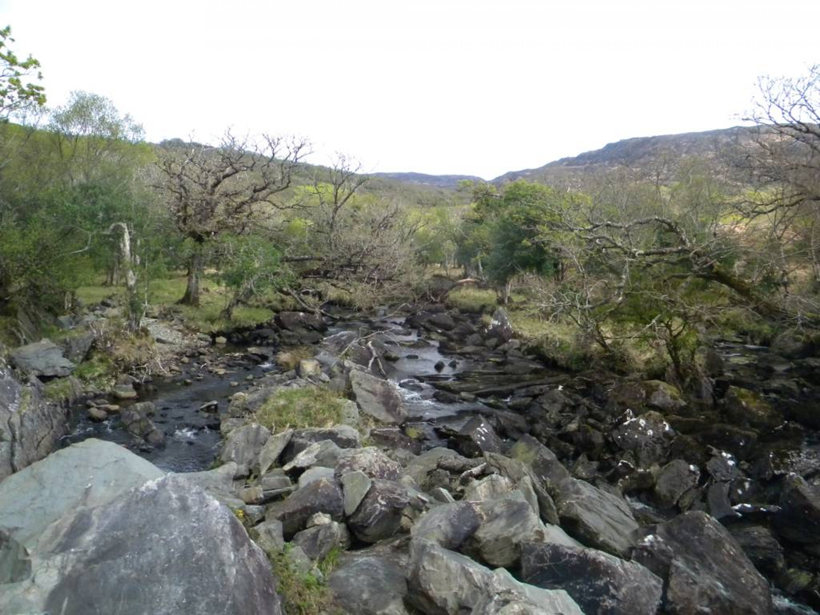 Ring_of_Kerry_(90)